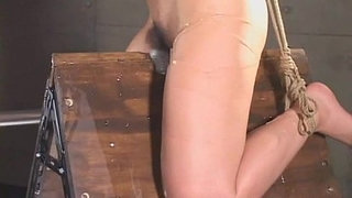 Japanese-babe-bond-and-dildoed